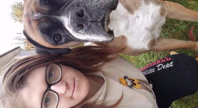 Le paradis des chiens pour un maître serein, dog sitter à Niort