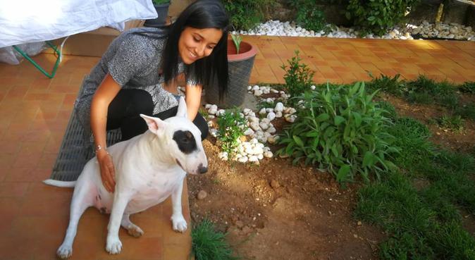 Il vostro cane sarà felice con me 🐾, dog sitter a Milano, MI, Italia