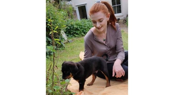 Hayley's Doggy Daycare in Canterbury, dog sitter in Canterbury, UK