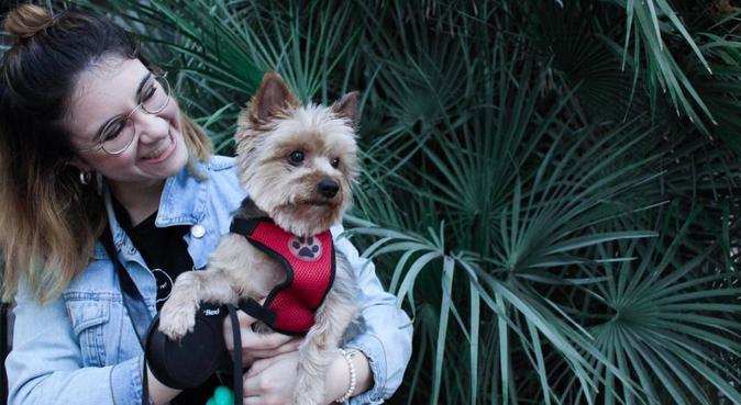 ¡La segunda casa🏠 de tu canino 🐶!, canguro en Murcia, España