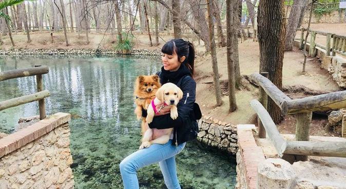 Cuidamos de tus mascotas con mucho amor, canguro en Benaguacil, València, España