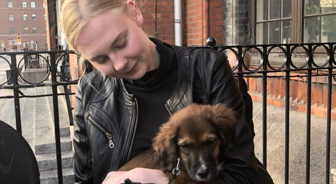 Kärlekfull hundpassning och rastning kring eslöv, hundvakt nära Eslöv