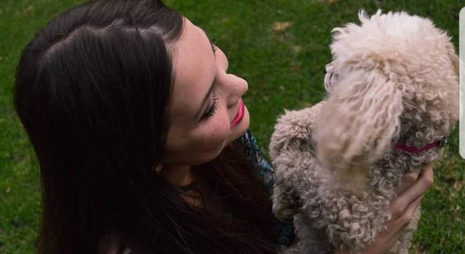 Personne disponible pour promener vos bebês, dog sitter à París
