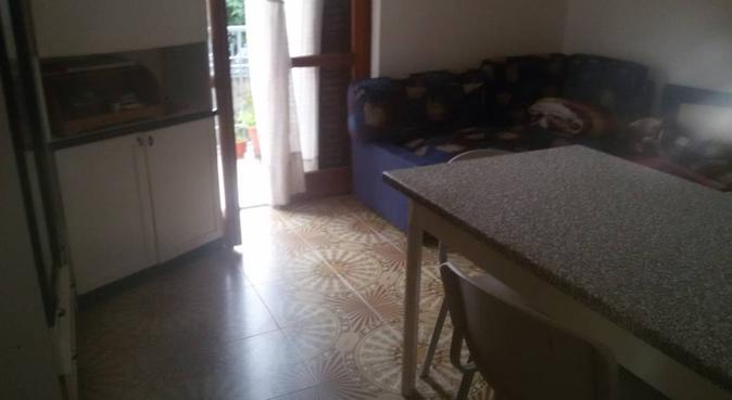 Dog sitter valenzano, dog sitter a Valenzano