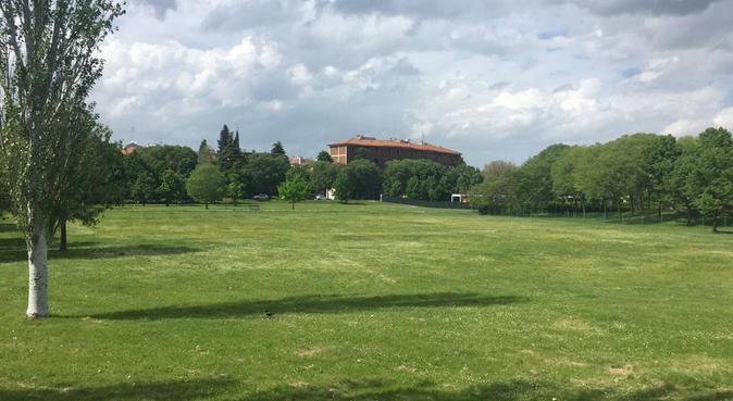 A casa o al parco in un'atmosfera di fiducia, dog sitter a Bologna