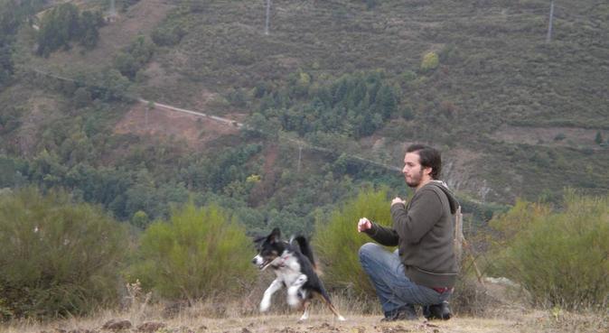 Dog Home, canguro en cabanillas del campo