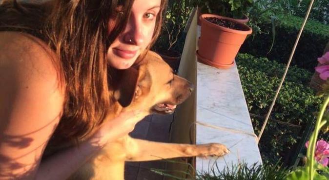 Passeggiate e coccole e tanto altro!, dog sitter a Genova, GE, Italia
