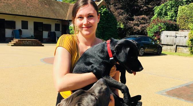 Des vacances au top pour votre toutou !, dog sitter à Paris