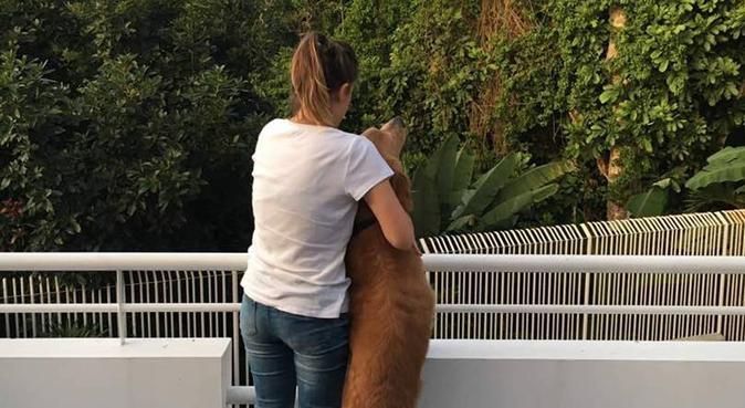 Dog lover, canguro en La Coruña