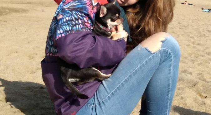 Benvinguts Dogs, canguro en Barcelona, España