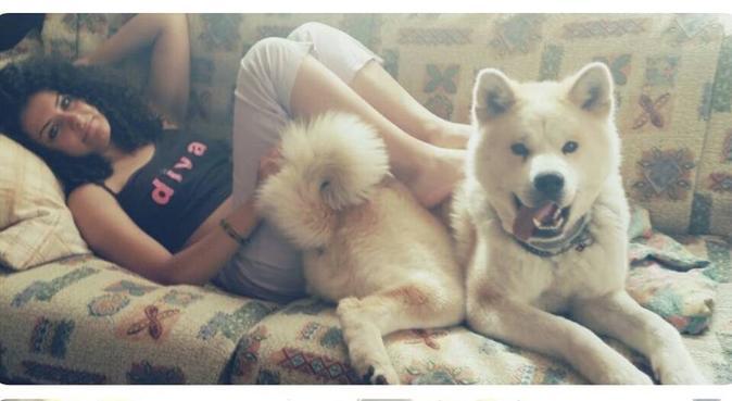 Non esiste compagnia migliore di un cucciolone😍, dog sitter a Parma