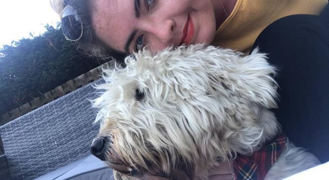 Full time dog lover, part time dog walker, dog sitter à Marseille