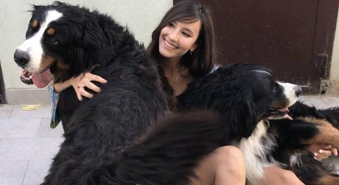 Affetto e attenzione, dog sitter a Bologna