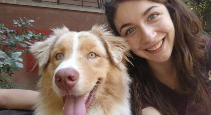 Passeggiate, giochi e coccole per il tuo pelosetto, dog sitter a Modena