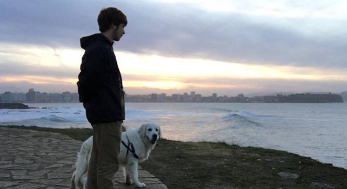 Paseadores con título de adiestrador y cuidador, canguro en Gijón
