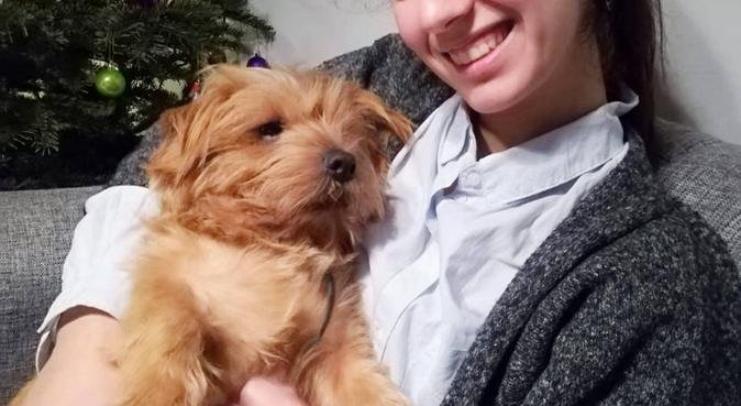 Amoureuse de tous les animaux, dog sitter à Amiens, France