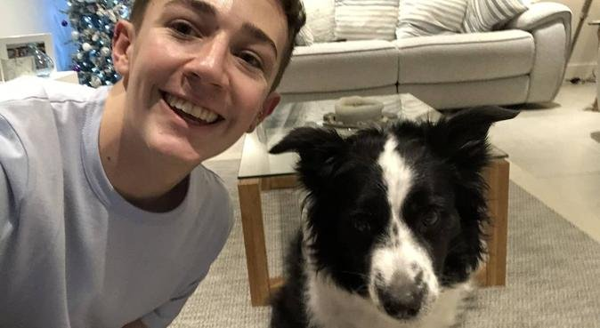 Uni Student who misses doggies!, dog sitter in Norwich, UK
