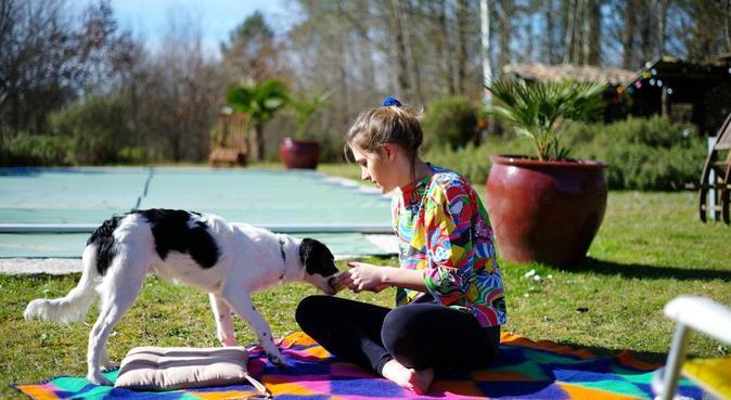 Le petit monde de Ninon, dog sitter à Bordeaux