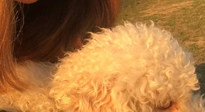 Happy animals, dog sitter a Bologna