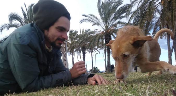 Diversión para tu perro, tranquilidad para ti, canguro en Valencia, España