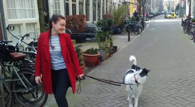 Dogs' lover in Utrecht, hondenoppas in Utrecht