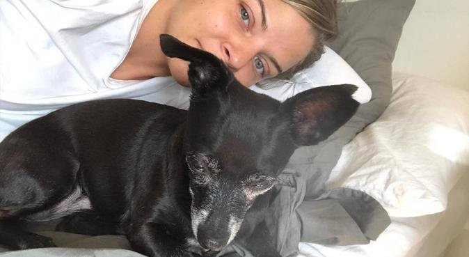 Erfaren hundpassning i Majorna, hundvakt nära GÖTEBORG