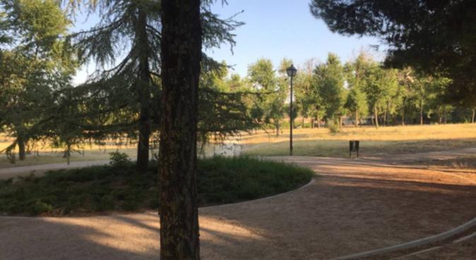 El segundo hogar de tu mascota ❤️🐶, canguro en Madrid