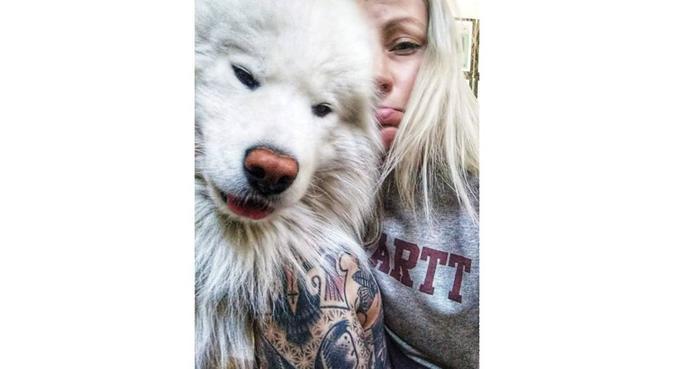 Crazy Dog Hugger, hundvakt nära Stockholm, Sweden