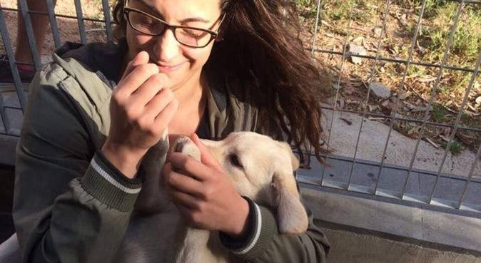 Passeggiate e tante coccole, dog sitter a Quartu Sant'Elena