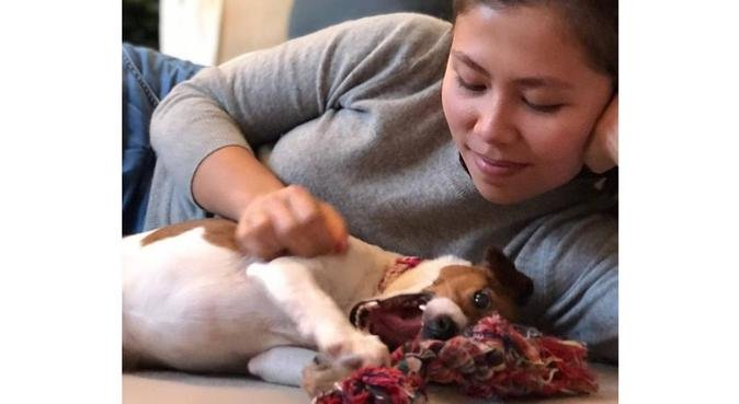 Doggy Carer/Lover in Raynes Park/Wimbledon!, dog sitter in London