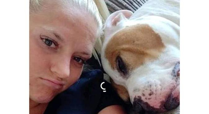 Passionate about pets dog walker and sitter, dog sitter in Liverpool