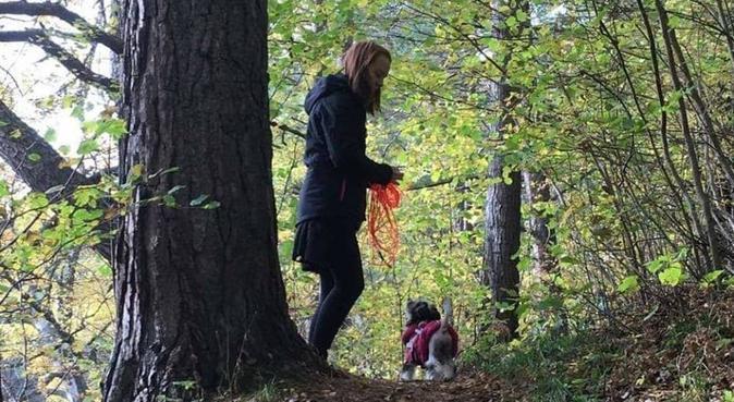 Student som gärna hjälper till med er hund, hundvakt nära Lund, Sverige