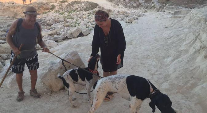 Hogar y cuidado perruno., canguro en Barcelona, España