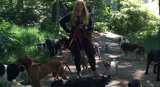 Kärleksfull doggywalker!, hundvakt nära Älvsjö