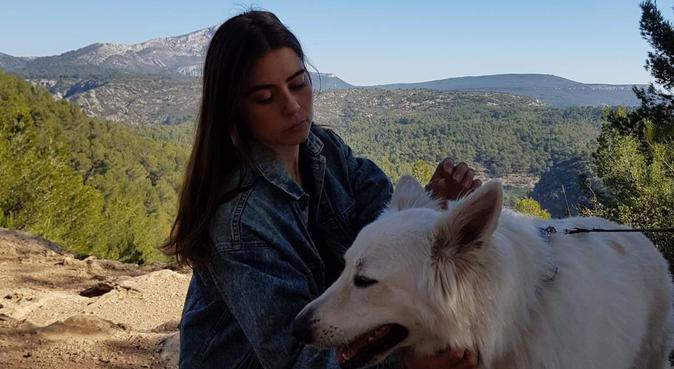Sortie idéal pour se dégourdir les pattes à Aix, dog sitter à Aix-en-Provence, France