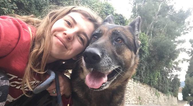 Grande promenade et câlins pour vous toutous :), dog sitter à Ollioules