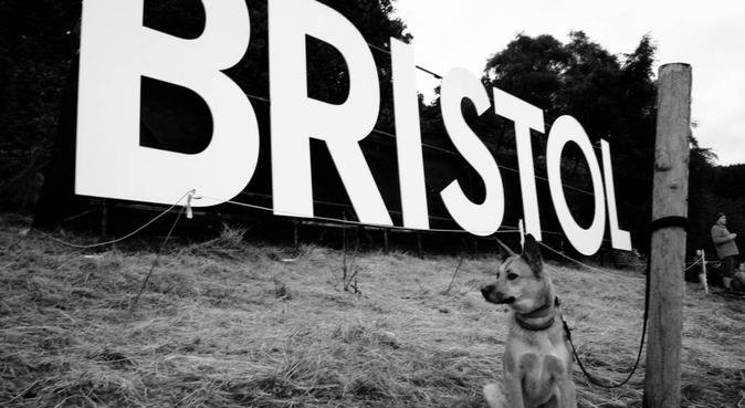 Howard's Bristol Walkabouts, dog sitter in Bristol