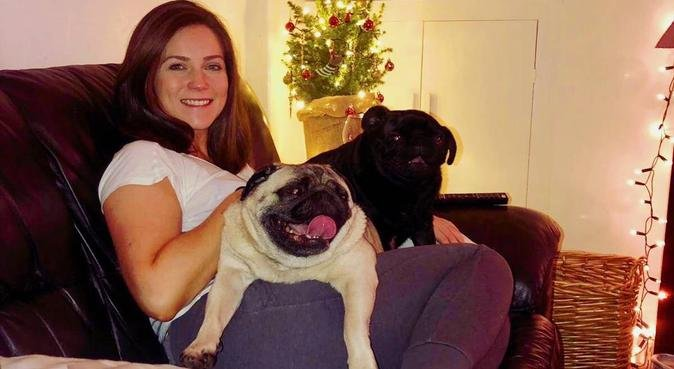 Dog play dates and weekend adventures - Cardiff, dog sitter in Cardiff