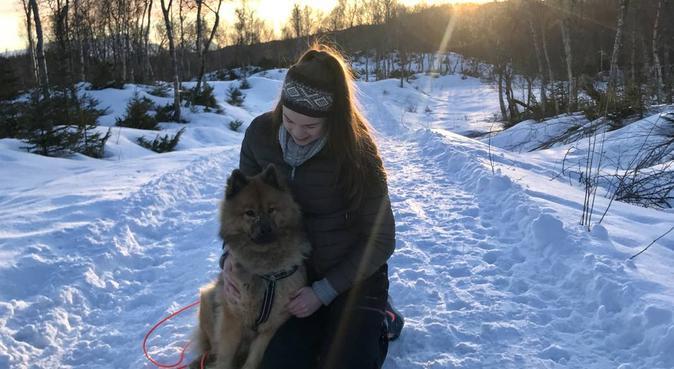 Turglad jente søker en sprek firbent, hundepassere i Bodø