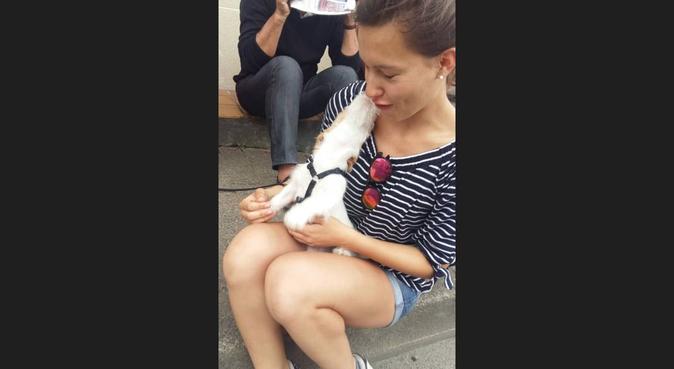Étudiante active, aimante et disponible, dog sitter à Lille