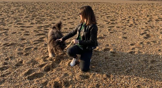 Balade tranquille, dog sitter à Vaucresson, France
