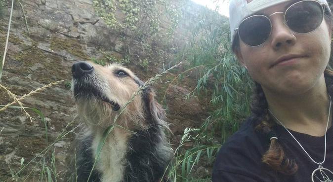 Un segundo hogar para tus perros, canguro en A Coruña