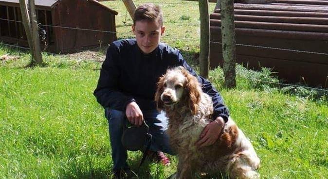 Chien câliné, maître rassuré, dog sitter à Saint-sébastien-sur-loire