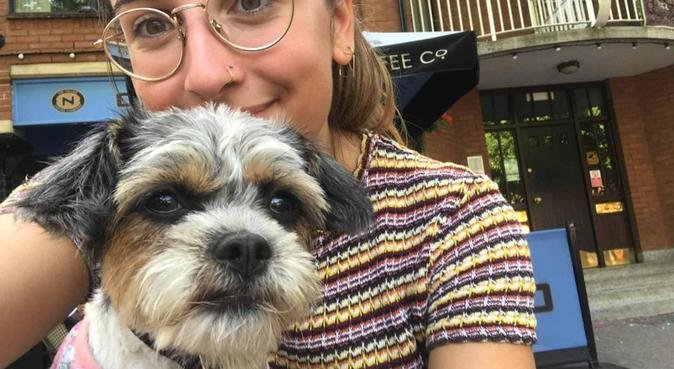 Dog love and care in Exeter!, dog sitter in Exeter