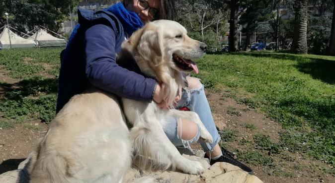 A casa o a passeggio dono tante attenzioni ai cani, dog sitter a Bari, BA, Italia