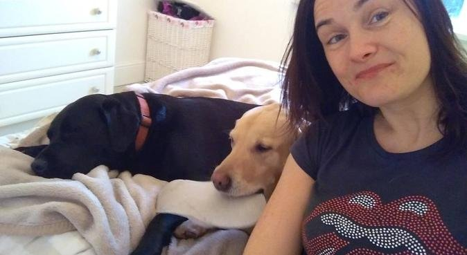 Doggy Care Motherwell, dog sitter in Motherwell