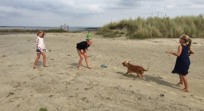 Gezin wat gek is op de gezelligheid van hondjes!, hondenoppas in Goes