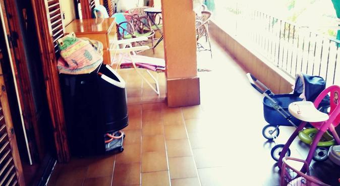 Paraiso perruno muy acogedor, canguro en Lloret de Mar
