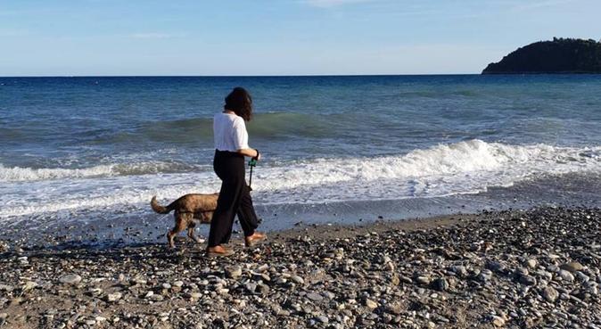 Passeggiate divertenti e responsabili, dog sitter a Firenze