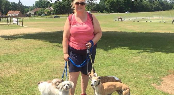 Take My Lead - Dog walking, dog sitter in Southampton
